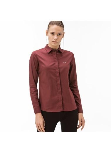 Lacoste Kadın  Gömlek CF2005.05V Bordo